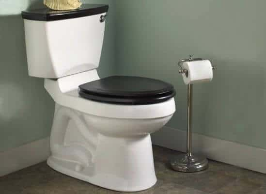 We Repair and Replace Toilets